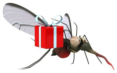 Christmas Pest Control – Don't Let Pests Ruin Your Celebrations